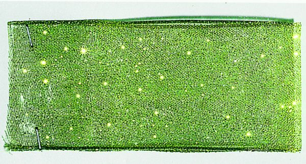 Organzaband Glitter 38mm/15m Moos
